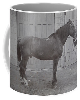 Coffee Mug featuring the photograph Vintage Photograph 1902 Horse With Handler New Bern Nc Area by Unknown