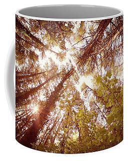 Vintage Summer Trees Coffee Mug