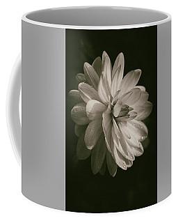 Vintage Velvet  Coffee Mug