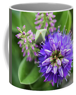 Violet Burst Coffee Mug