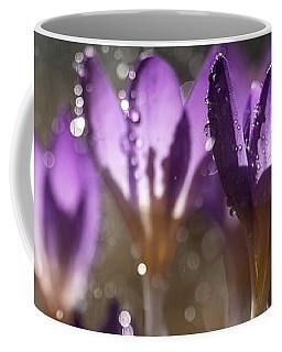 Violet Crocuses In The Morning Rain Coffee Mug by Jaroslaw Blaminsky