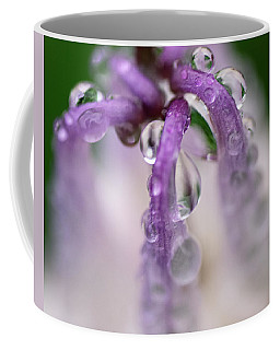 Coffee Mug featuring the photograph Violet Mist by Susan Capuano