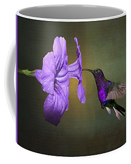 Violet Sabrewing Hummingbird Coffee Mug