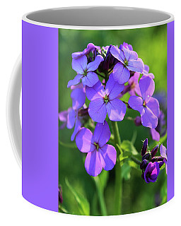 Coffee Mug featuring the photograph Purple Flower by Melinda Blackman