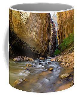 Virgin River - Zion National Park Coffee Mug