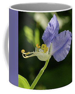 Virginia Dayflower Coffee Mug