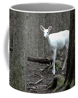 Coffee Mug featuring the photograph Vision Quest White Deer by LeeAnn McLaneGoetz McLaneGoetzStudioLLCcom