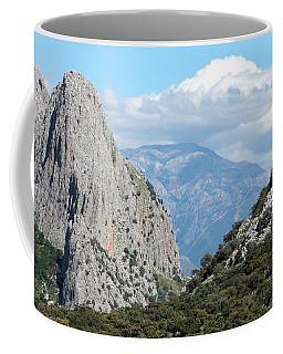 Viva Andalucia Coffee Mug