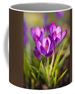 Vivid Petals Coffee Mug by Mike Reid