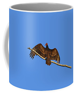 Coffee Mug featuring the photograph Vivid Vulture .png by Al Powell Photography USA