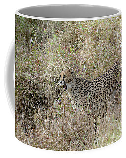 Coffee Mug featuring the photograph Vocalizing by Fraida Gutovich
