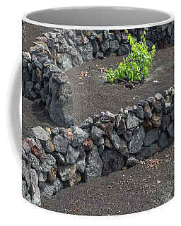 Volcanic Vineyards Coffee Mug by Delphimages Photo Creations