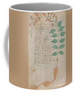 Voynich Flora 07 Coffee Mug