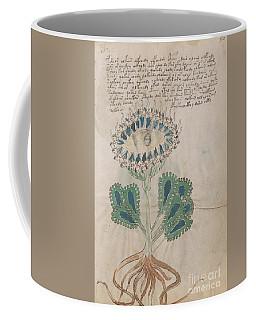 Voynich Flora 11 Coffee Mug