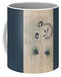 Voynich Flora 12 Coffee Mug