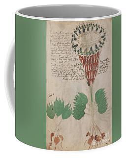 Voynich Flora 15 Coffee Mug
