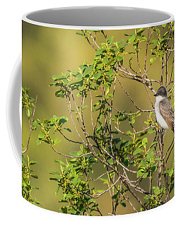 Coffee Mug featuring the photograph Waiting For A Victim by Onyonet  Photo Studios