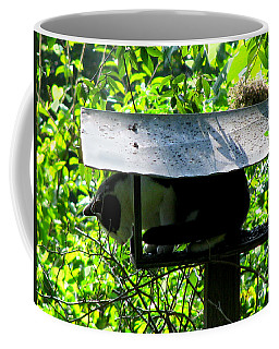 Waiting For Dinner Coffee Mug by Donna Brown