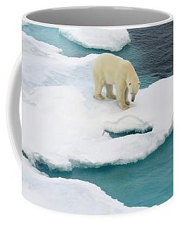 Waiting For Seal Coffee Mug
