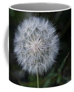 Waiting For The Breeze Coffee Mug