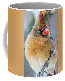 Coffee Mug featuring the photograph Waiting Her Turn  by Skip Tribby