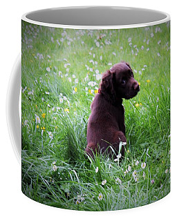 Come Play With Me... Coffee Mug