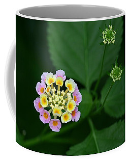 Coffee Mug featuring the photograph Waiting Their Turn by Shari Jardina