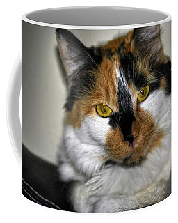 Coffee Mug featuring the photograph Waking Cleo No2 by Michael Frank Jr