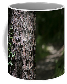 Walk In The Woods Coffee Mug