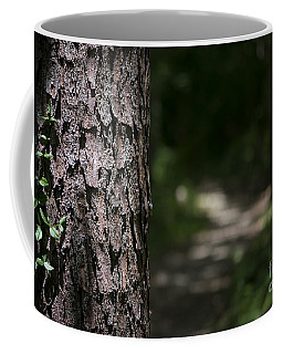 Walk In The Woods Coffee Mug