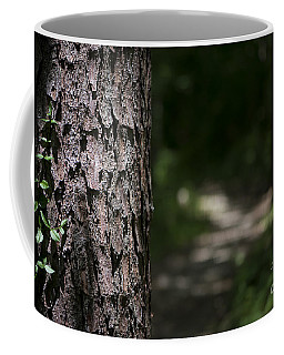 Walk In The Woods Coffee Mug by Andrea Silies