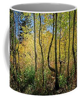 Walking In The Woods Coffee Mug