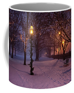 Walking The Path On Salem Common Coffee Mug