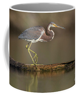 Walking Tri Colored Coffee Mug