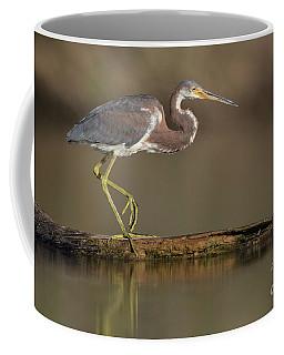Walking Tri Colored Coffee Mug