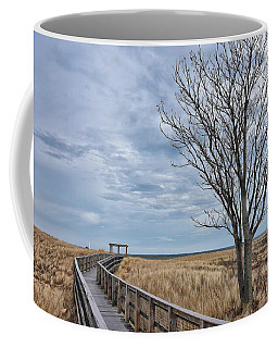 Walkway At Plum Island Coffee Mug by Tricia Marchlik