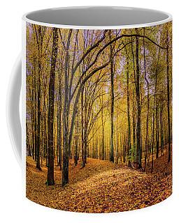 Walkway In The Autumn Woods Coffee Mug