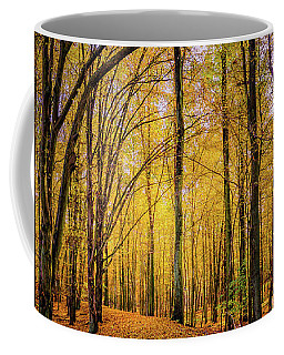 Coffee Mug featuring the photograph Walkway In The Autumn Woods by Dmytro Korol