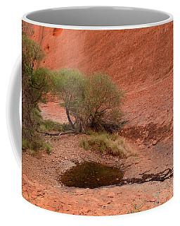 Coffee Mug featuring the photograph Walpa Gorge 01 by Werner Padarin