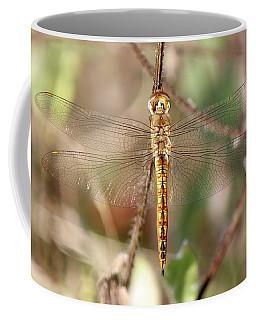 Wandering Glider Coffee Mug