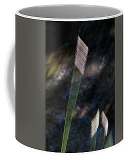 Wands Over Water Coffee Mug
