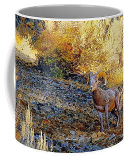 Warm Light Coffee Mug
