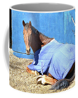 Warm Winter Day At The Horse Barn Coffee Mug
