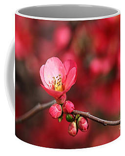 Warmth Of Flowering Quince Coffee Mug