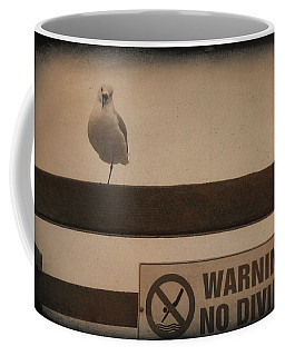 Warning No Diving 2 Coffee Mug by Ernie Echols