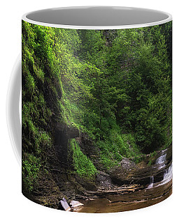 Coffee Mug featuring the photograph Warsaw Falls by Mark Papke