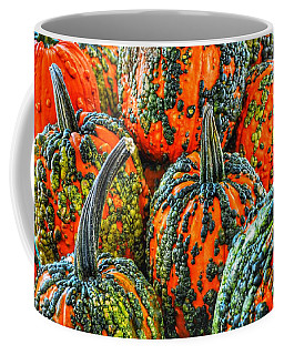 Warty Pumkins  Coffee Mug
