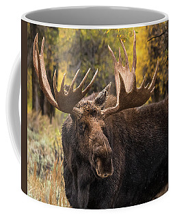 Washakie In The Autumn Beauty Coffee Mug by Yeates Photography