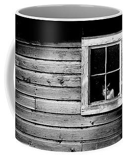 Watch Cat Coffee Mug
