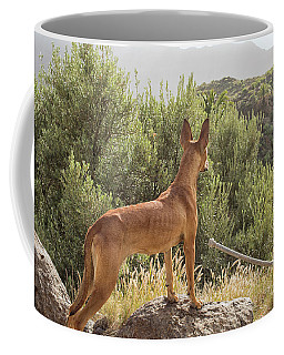 Watchful Dog Coffee Mug